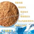 Antarctic krill powder