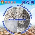 贝壳粉 1