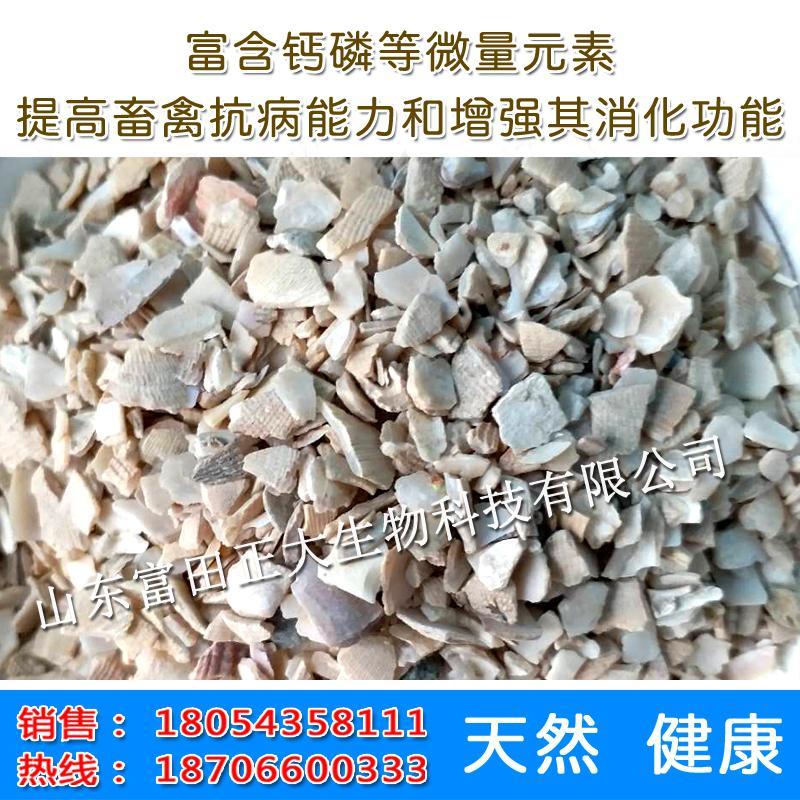 Shell powder 2
