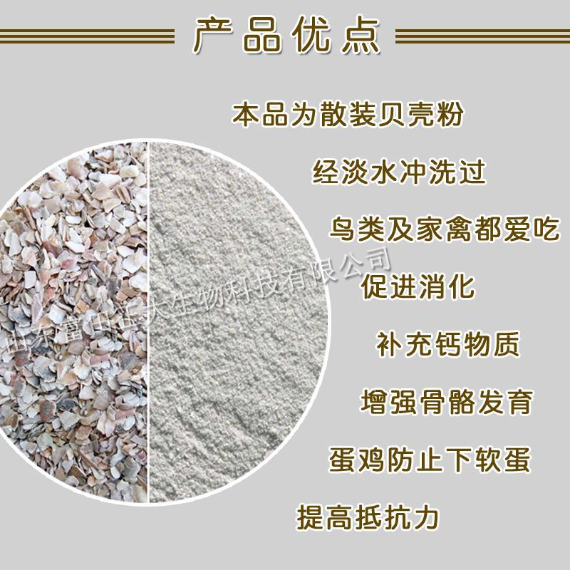 Shell powder 4