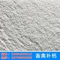 Shell powder 5