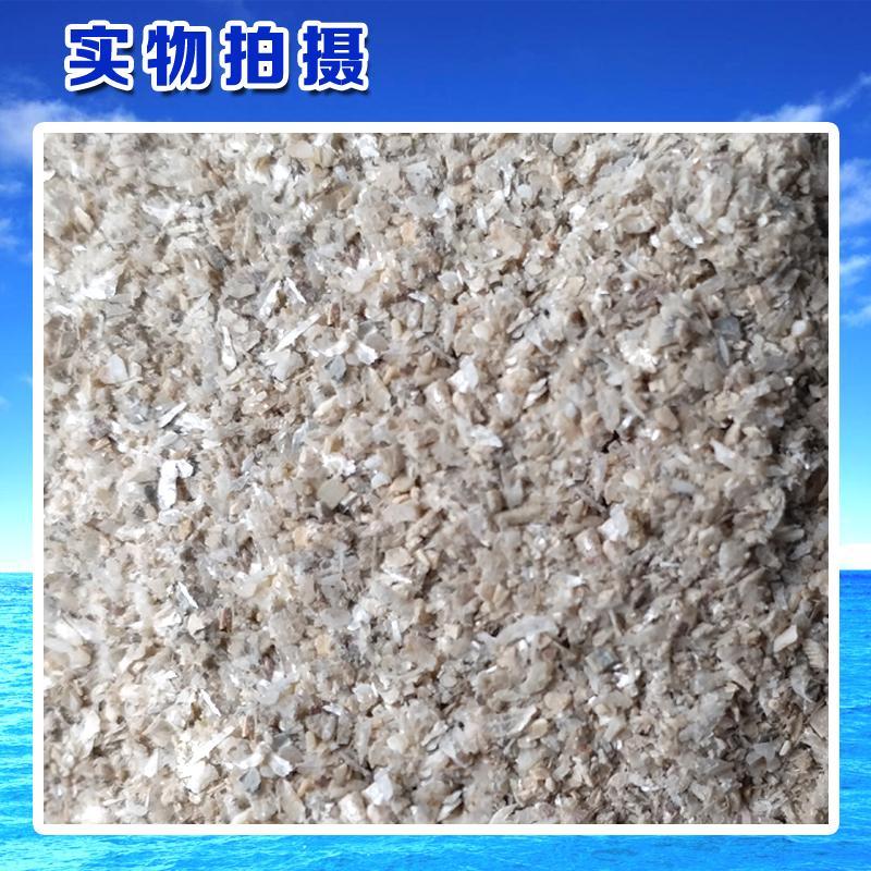 Shell powder 7