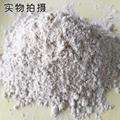 Oyster powder 4