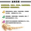 wheat bran 5