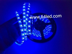 smd 5050 led strip super bright lumen low price high qualtiy