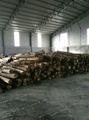 Melamine Warm  Blockboard 5