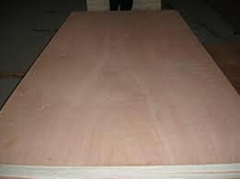 Building Material Film Faced Plywood