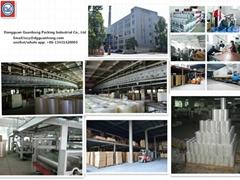 Dgongguan Guanhong Packing Industry Co., Ltd