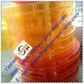 Anti-insect pvc strip yashen company 4