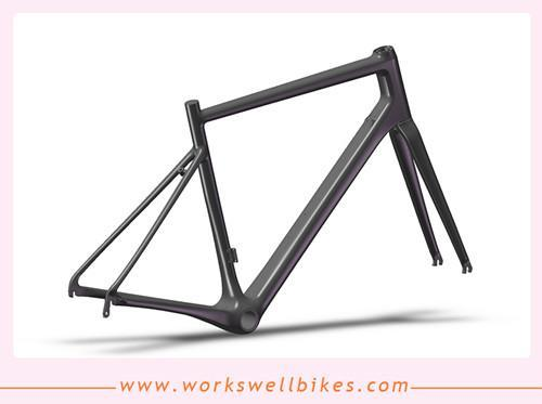 2017 workswell OEM factory newest design China Carbon Frame Endurance Road Bike  1