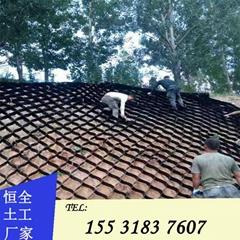 泗洪县植草护坡打孔蜂巢格室
