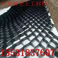 淳安县强力整体式土工格室护坡