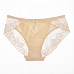 Custom Design mesh breathable lace briefs underwear women hipster panties for gi