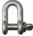 Rigging Hardware U.S.Screw Pin Chain