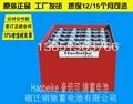 林德叉车蓄电池48V560
