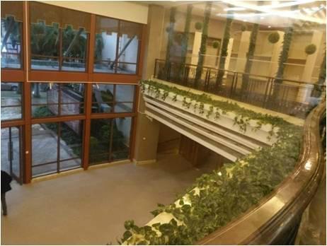 办公室绿植装饰 1