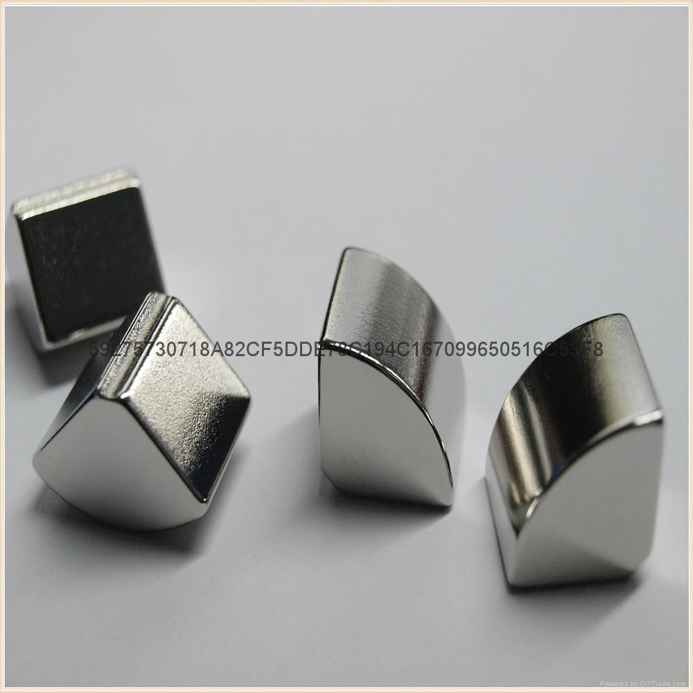 NdFeB Motor Magnets 3