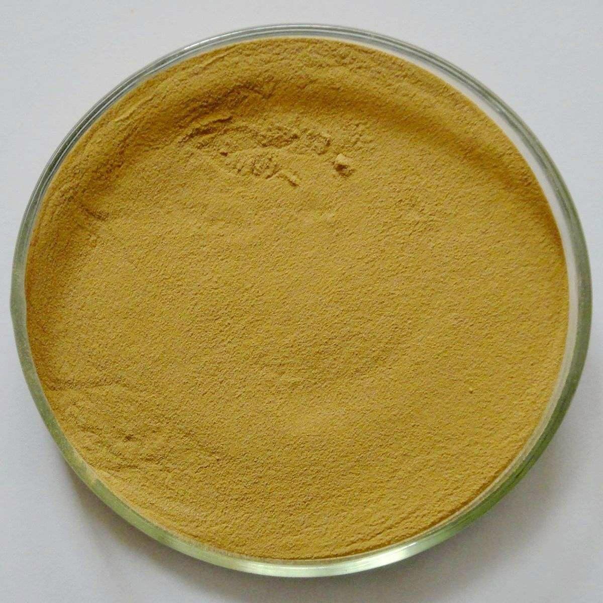 Organic Milk Thistle Extract Powder 80% silymarin, 30%silybin+isosilybin 2