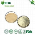 High quality red ginseng root extract 7% 2
