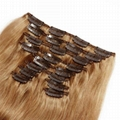 100% Best Hair Extensions Virgin Straight Remy Human Hair Clip in Hair Extension 3