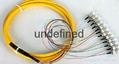 FC头12芯束状尾纤 单模12芯束状尾纤 2