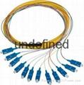 FC头12芯束状尾纤 单模12芯束状尾纤 5