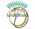 12芯束状尾纤SC/APC1.5米 单模束状尾纤 2