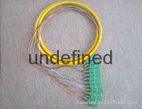 12芯束状尾纤SC/APC1.5米 单模束状尾纤 3