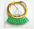 12芯束状尾纤SC/APC1.5米 单模束状尾纤 5