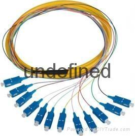SC/UPC单模12芯束状尾纤 1