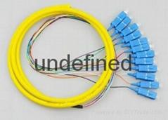 12芯束状尾纤SC方头FC圆头单模束状尾纤