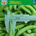 Cheap price! IQF frozen sugar snaps for