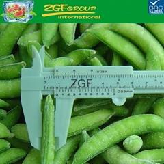 Cheap price! IQF frozen sugar snaps for