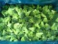 IQF Grade A green frozen broccoli spears cheap price 1