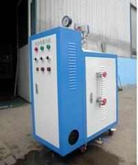 廠家供應小型免於報檢電加熱鍋爐
