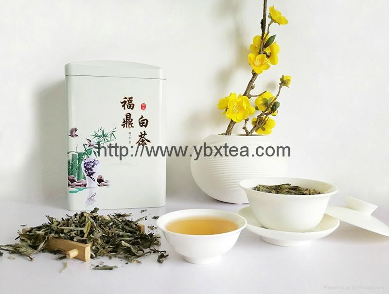 Chinese Premium non-fermented White Tea BaiMuDan White Poeny 2