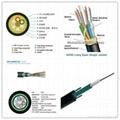 Optical Fiber Cable Sheath Extrusion Line and ADSS Fiber Production Line 1