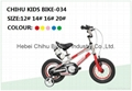 Children Kids bicycle bike OEM is available 2