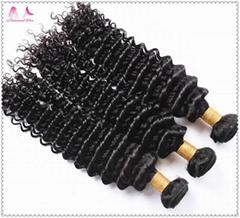 Best Price Virgin Brazilian Hair Top Quality Deep Curly Human Hair Bundles