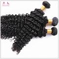 Best Price Virgin Brazilian Hair Top Quality Deep Curly Human Hair Bundles 2
