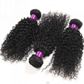 Double Drawn Natural Color Virgin Indian Kinky Curly Human Hair 2