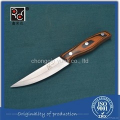 High Quality Eco-Friendly Stainless Fruit Carving Knife For Sale