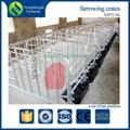 pig raising equipment adjustable