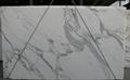 卡拉卡塔白通體微晶石 3