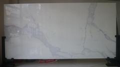 CALACATTA  full body Crystallized Glass Panel