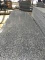 Cheap G603 Granite Big Slab Natural Stone 1
