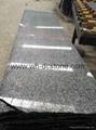 Chinese G603 Granite Big Slab Polished Natural Stone  2