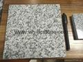 Factory supply China grey granite G602 2