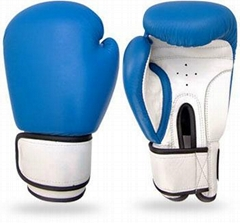 Boxing Gloves Boxing Equipments Levior impex