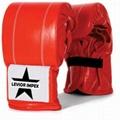 Bag Gloves Boxing Equipments Levior